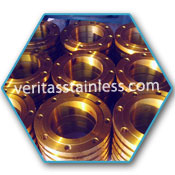 Copper Nickel Forged Flanges