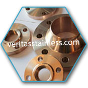 Copper Nickel Ring Type Joint Flanges