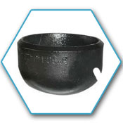 Alloy Steel Forged Cap