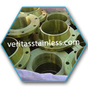 A182 F446 Stainless Steel  Ring Type Joint Flanges